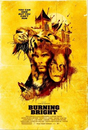 Обжигающе красивый  (Burning Bright) фильм онлайн